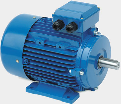 New Plymouth Rewinds Ltd Electric Motor And Drives